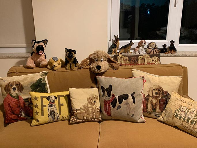 Largest collection of dog-related items cushions