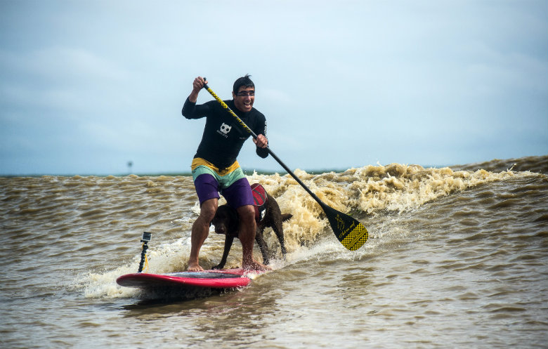 Longest Stand Up Paddleboard (SUP) ride on a river bore by a human/dog pair